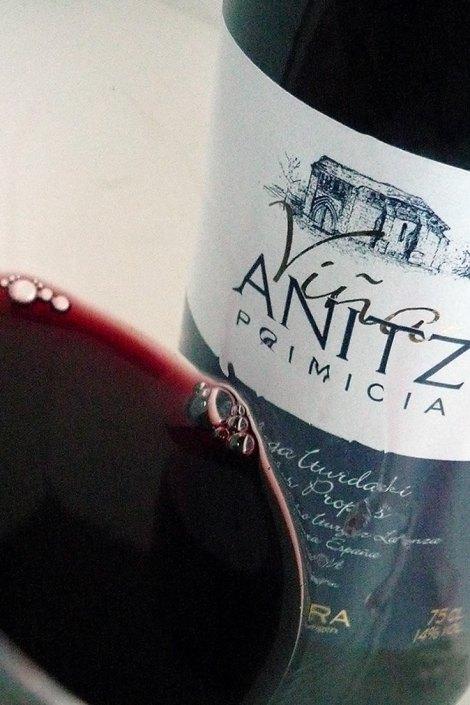 Detalle de Viña Anitz.