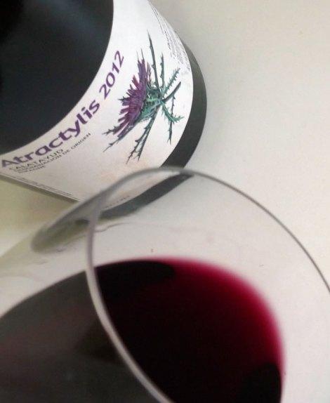 Detalle del vino Atractylis en la copa.