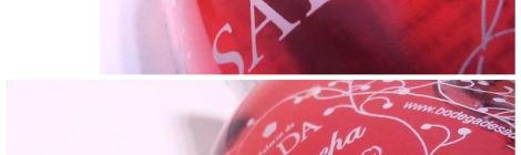 Detalles de la botella de Palacio de sada.