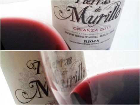 Detalles de la coloración del vino Tierras de Murillo Crianza en la copa.