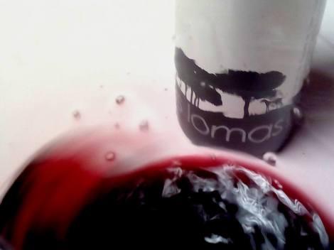 """""""Mareando"""" al vino Las Lomas 2013 en la copa."""