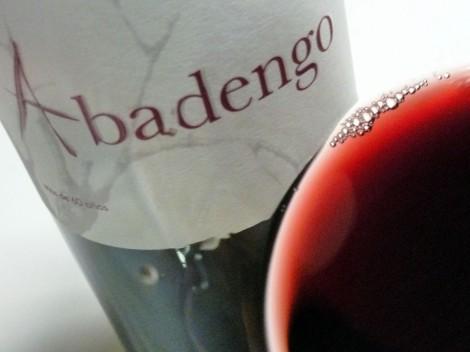 Detalle de la lágrima del vino Abadengo Crianza 2010.