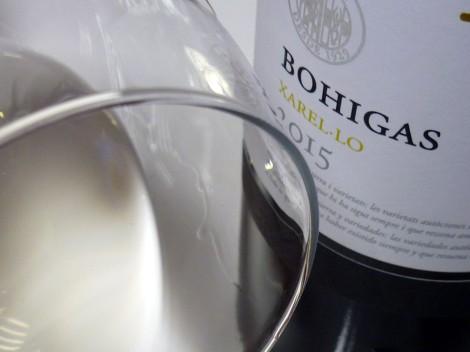 Detalle de la lágrima del vino Bohigas Xarel·lo.
