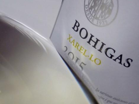 Detalle del vino Bohigas Xarel·lo.