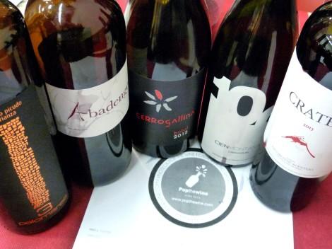 Los 5 vinos catados en el orden que fueron catados.