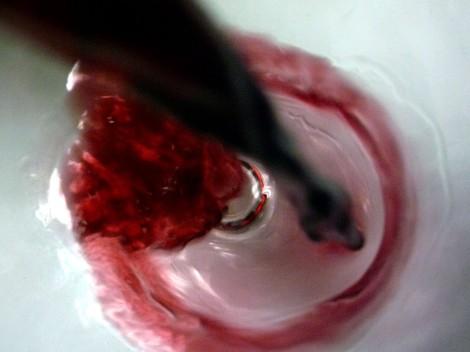 Sirviendo el vino Cerrogallina 2013 en la copa.