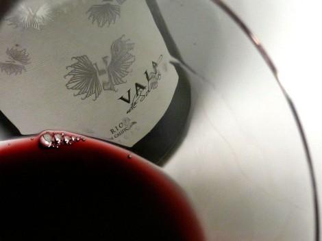 Detalle del vino Vala de Solabal 2010 en la copa.