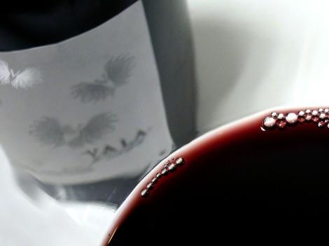 Detalle del color del vino Vala de Solabal 2010.