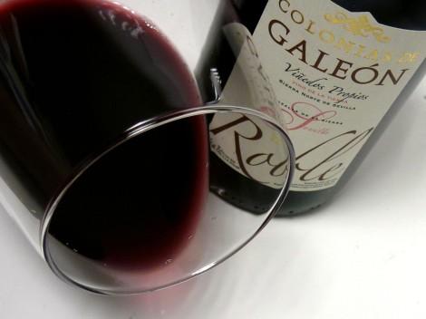 El vino Colonias de Galeón Roble 2013 en la copa.