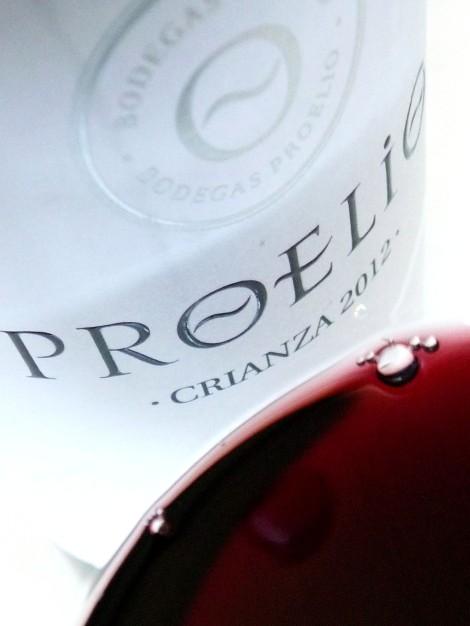 Detalle del color del vino Proelio Crianza 2012.