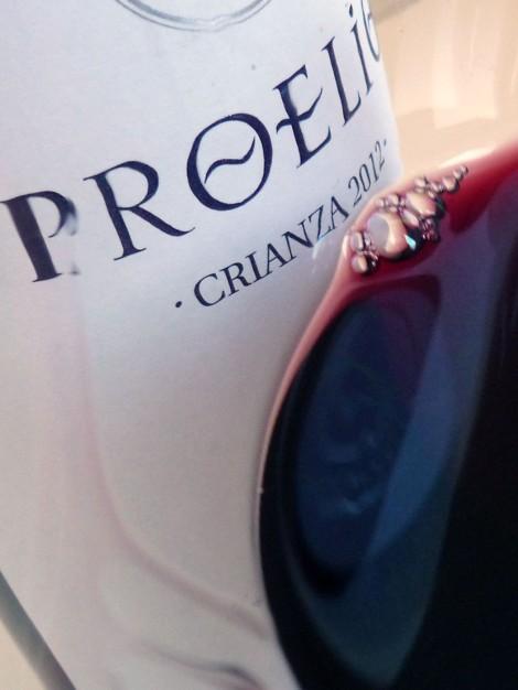 Detalle de la lágrima del vino Proelio Crianza 2012.