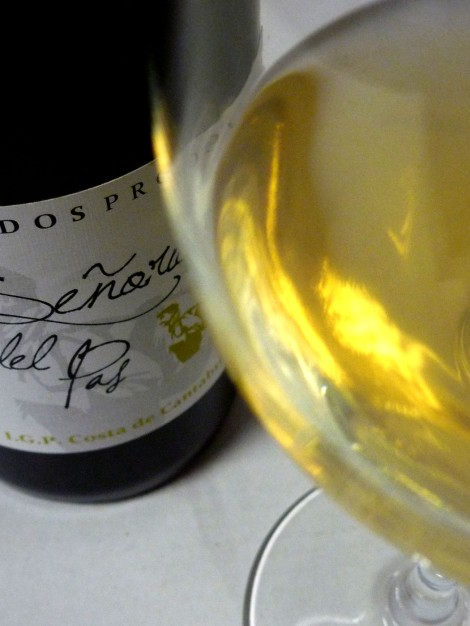 Detalle del vino Señorío del Pas en la copa.