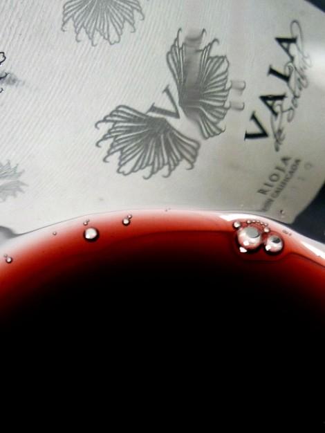El color del vino Vala de Solabal.
