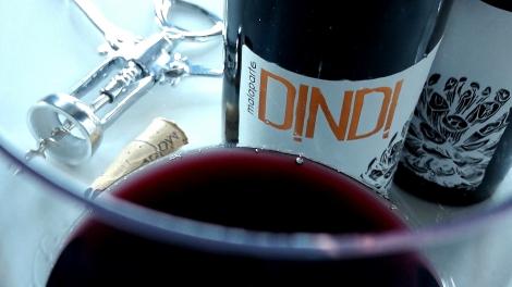 Detalle del vino Dindi Garnacha en la copa.