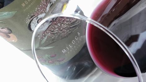 miloca_carinyena_ribete_vino