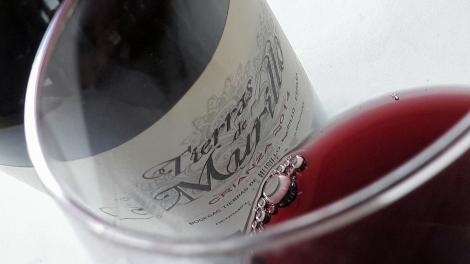 Detalle del vino Tierras de Murillo Crianza en la copa.