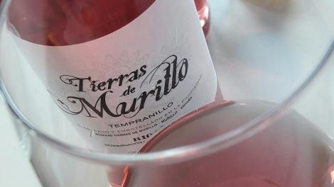 tierras_de_murillo_rosado_vino_copa