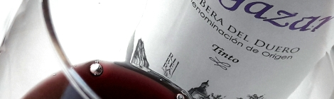 Detalle del vino Vegazar Tinto en la copa.