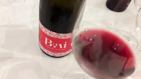 vinos_dificiles_de_verver_byvi