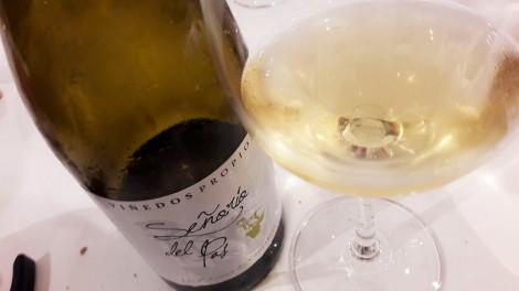 vinos_dificiles_de_verver_senorio_del_pas