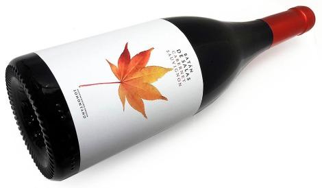 batan_de_salas_cabernet_sauvignon_botella_vino_ml