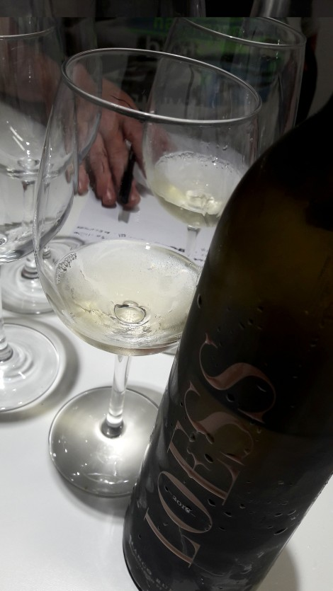 taller_aromas_vinos_blancos_loess_verdejo