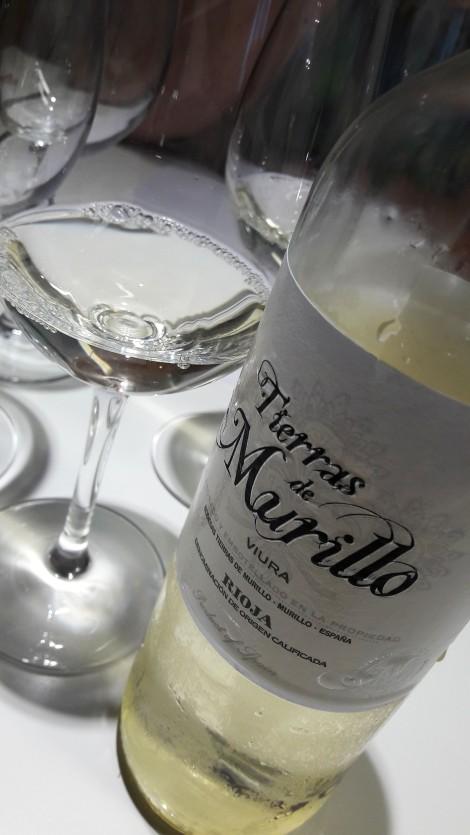 taller_aromas_vinos_blancos_tierras_de_murillo_viura