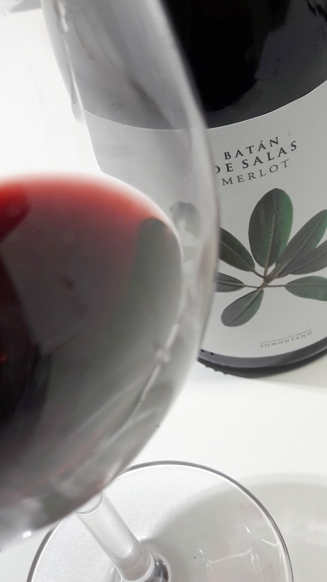 taller_aromas_vinos_tintos_batan_de_salas_merlot