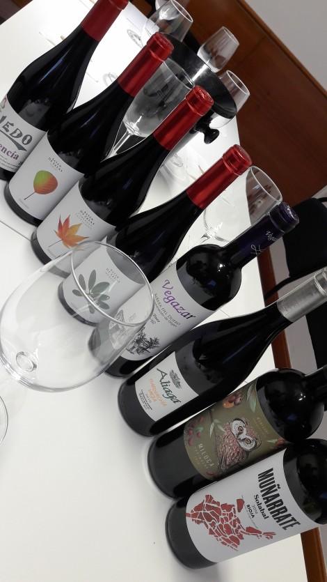 taller_aromas_vinos_tintos_botellas
