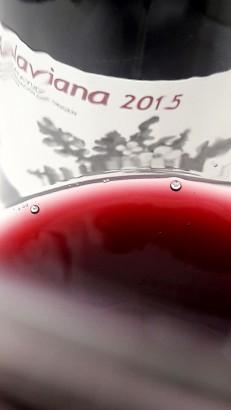 El color del vino Alaviana 2015.