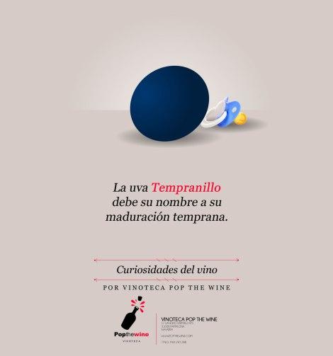 curiosidades_del_vino_uva_tempranillo