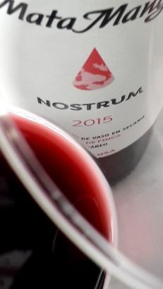 Detalle del ribete del vino Nostrum.