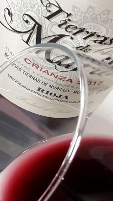 Detalle del ribete del vino Tierras de Murillo Crianza 2015.