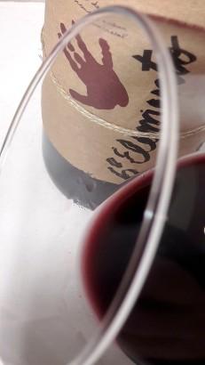 Detalle del ribete del vino Sexto Elemento.