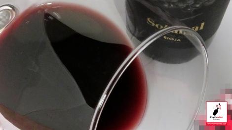 solabal_reserva_2010_ribete_vino