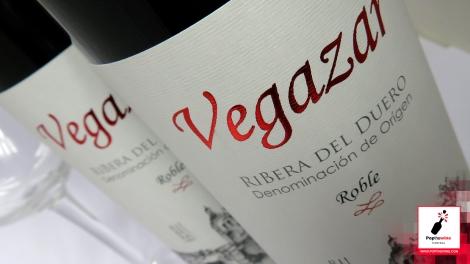 vegazar_roble_2016_etiqueta_vino