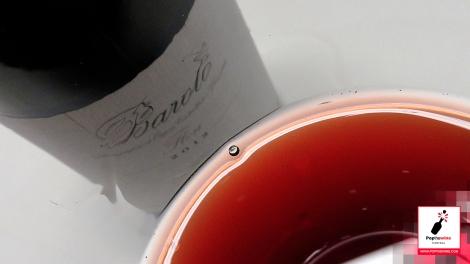 cata_algunos_vinos_italianos_barolo_copa