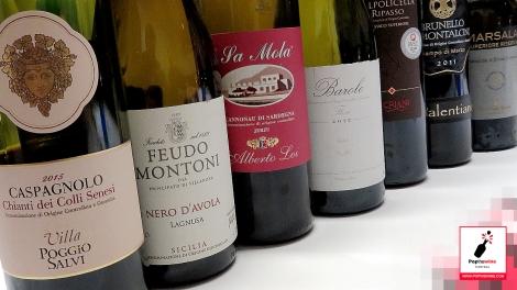 cata_algunos_vinos_italianos_botellas