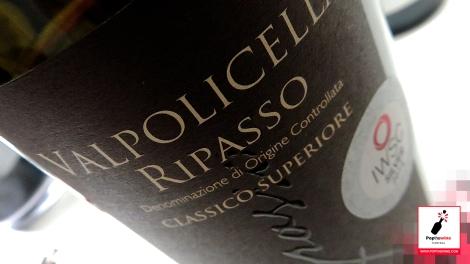 cata_algunos_vinos_italianos_valpolicella_ripasso