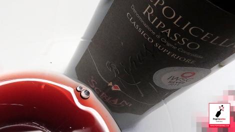cata_algunos_vinos_italianos_valpolicella_ripasso_copa