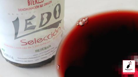 ledo_seleccion_2009_detalle_copa_vino