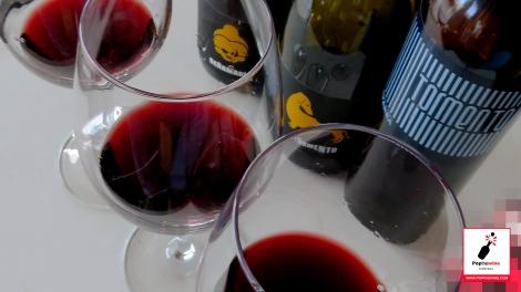 senamaria_y_tormento_vinos_botellas