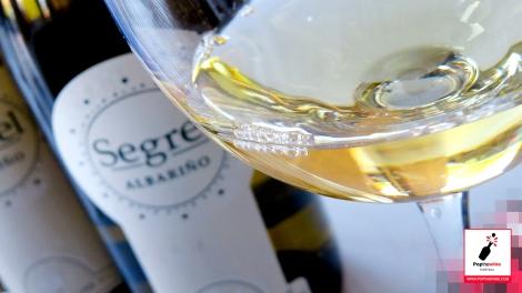 segrel_y_segrel_ambar_detalle_vino_copa_segrel
