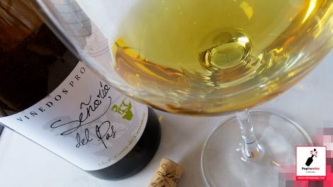 senorio_del_pas_2015_copa_vino