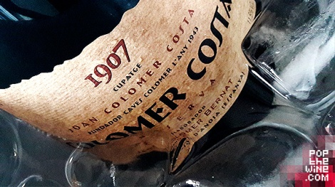 colomer_costa_reserva_brut_nature_botella_cava_hielo